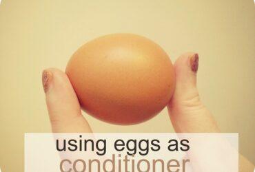 Egg For Hair Care
